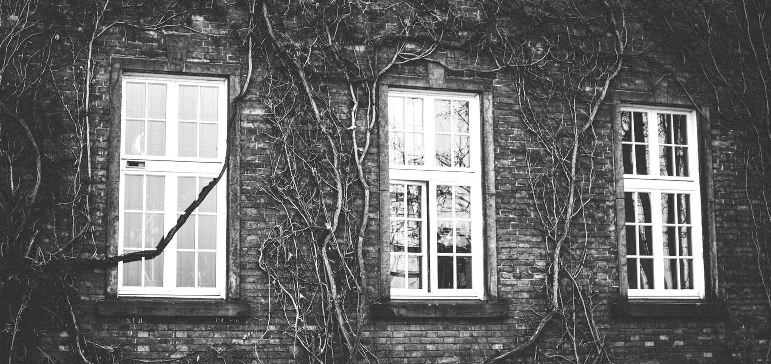 header-okna-dinuovo